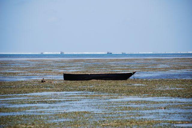 Zdj�cia: Wbrze�e, Wybrze�e, W oczekiwaniu na pasa�er�w, KENIA