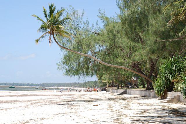Zdjęcia: Wbrzeże, Wybrzeże, Plaża, KENIA