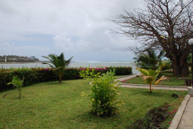 Zdjęcia: Mombasa, Mombasa, Baobab 2, KENIA