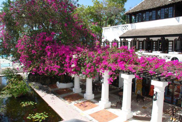 Zdjęcia: Teren przy hotelu Shanzu Palm i Coral Beach, Wybrzeże, Łódeczki, KENIA