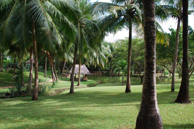 Zdj�cia: Coral Palm Beach, Wybrze�e, ... 2 , KENIA