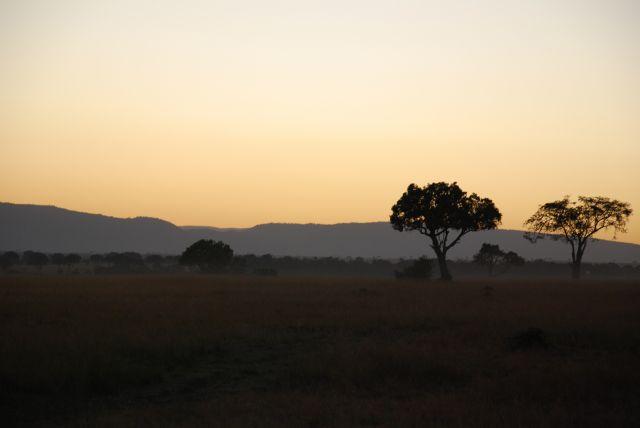 Zdjęcia: SFARI MASAI MARA, MASAI MARA, Wschód słońca 2, KENIA