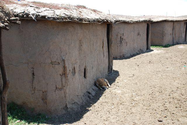 Zdjęcia: SAFARI wioska Masajów, Masai Mara, Chatki Masajów, KENIA