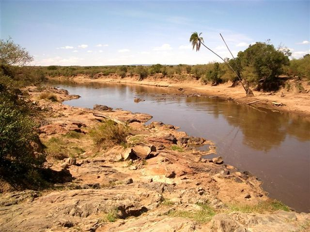 Zdjęcia: MASAI MARA, ZIEMIA MASAJÓW, KENIA