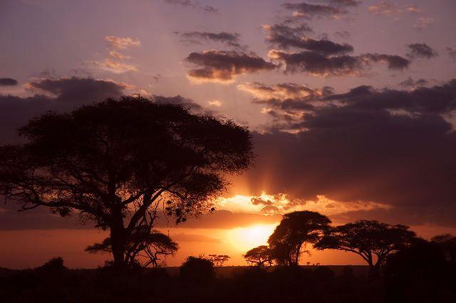 Zdjęcia: Amboselli, Afrykański zachód słońca, KENIA