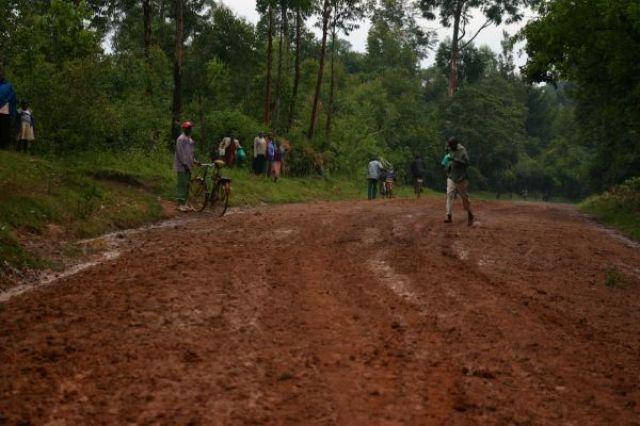 Zdj�cia: droga do Kakamega, Kakamega, Droga do lasu deszczowego, KENIA
