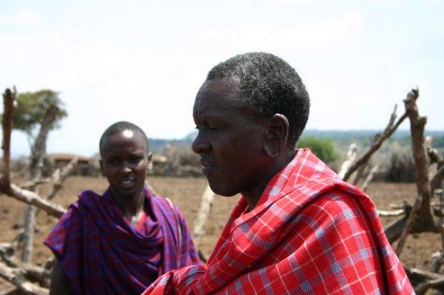 Zdjęcia: Masai Mara, Masai Mara, Ozdobne uszy, KENIA
