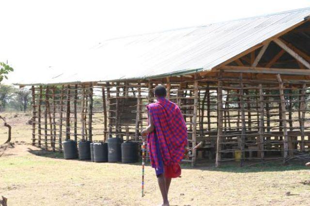 Zdj�cia: Masai Mara, Masai Mara, Masajski nauczyciel i budynek szko�y, KENIA