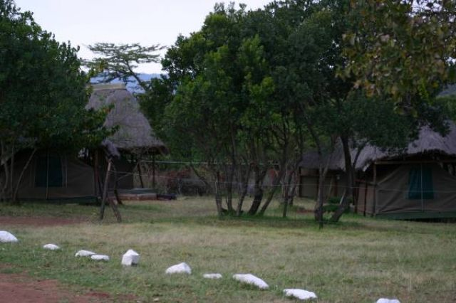 Zdjęcia: Masai Mara, Masai Mara, Noclegownia w Masai Mara, KENIA