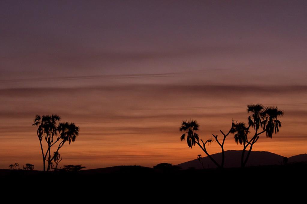 Zdjęcia: NP Samburu, NP Samburu, Nocne kolory Afryki, KENIA