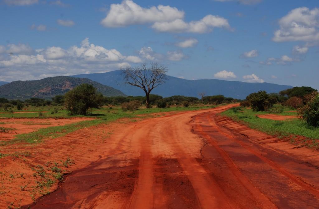 Zdjęcia: Park Narodowy Tsavo, między Nairobi a wybrzeżem, Droga, KENIA