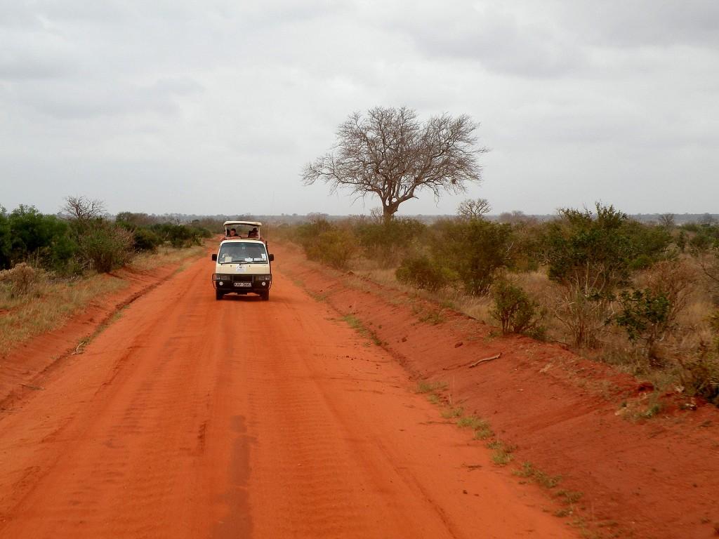 Zdjęcia: Tsavo East, płd Kenia, Czerwona ziemia Masajów, KENIA