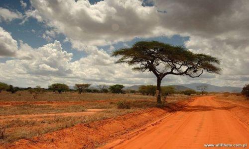 Zdjecie KENIA / Tsavo East / Tsavo East / Tsavo East
