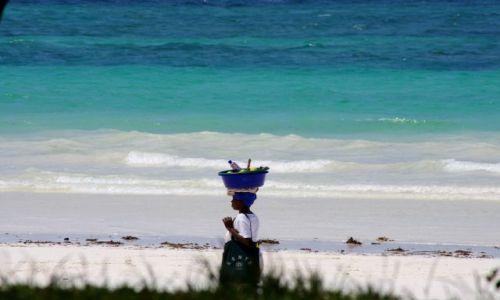 Zdjęcie KENIA / Diani / Ocean Indyjski / Miska