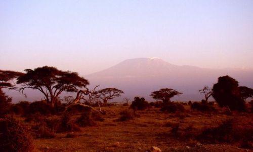 Zdjecie KENIA / - / Amboseli / Kilimanjaro