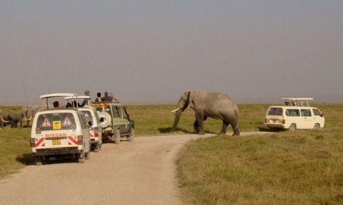 Zdjęcie KENIA / - / Amboseli / Autostop