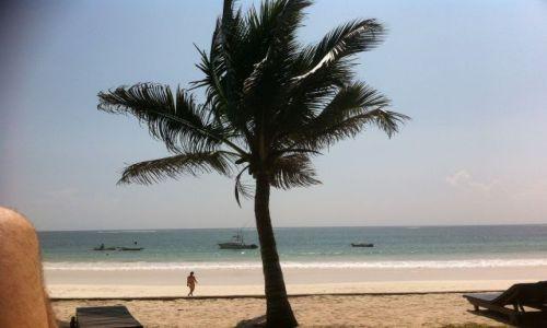 Zdjęcie KENIA / Połódniowe wybrzeże / Diani / Plaża Kenya