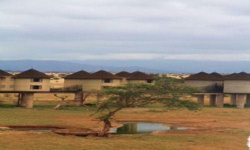Zdjecie KENIA / - / Tsavo / poranek w Tsavo