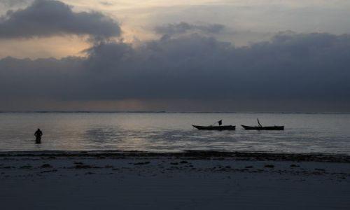 Zdjecie KENIA / Diani / Beach / pocztowka poranna