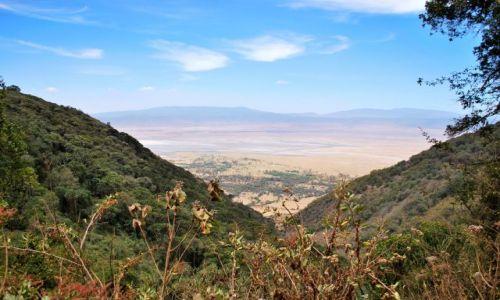 Zdjecie KENIA / AFRYKA / Park Serengeti / ...