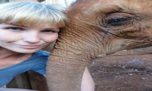 KENIA / - / Nairobi / w Sierocińcu dla słoni im. Davida Scheldricka w Nairobi