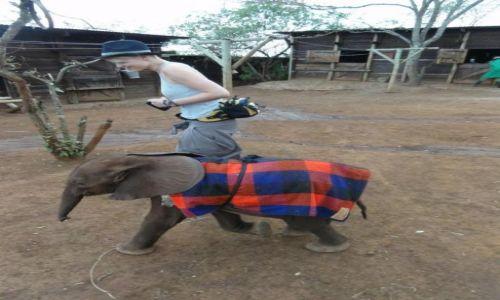 Zdjecie KENIA / - / Nairobi / run Ela, run!