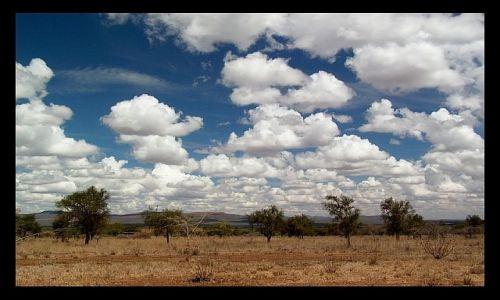 Zdjecie KENIA / południowa Kenia / południowa Kenia / Z głową w obłokach...:o)