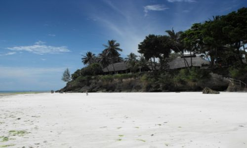 Zdjęcie KENIA / Diani / plaża / zima w Kenii