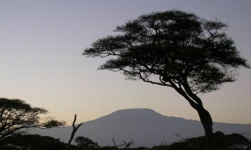 KENIA / . / P.N. Amboseli / Kilimandżaro o wschodzie słońca