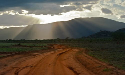 Zdjecie KENIA / - / Tsavo East / Out of Africa