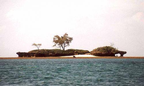 Zdjecie KENIA / SOUD COAST / OCEAN INDYJSKI / PRZYBRZEZNE WYSPY