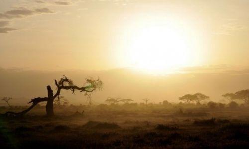 Zdjecie KENIA / - / A.N.P / Amboseli National Park