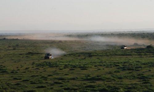 Zdjecie KENIA / Droga do Mombasy / Park Narodowy Amboseli / W terenie