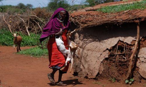 Zdjecie KENIA / między Nairobi a wybrzeżem / okolice Kajiado / W masajskiej wiosce