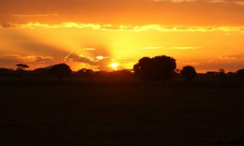 Zdjęcie KENIA / Park Narodowy Tsavo / Tsavo East / Safari