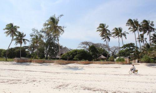 Zdjecie KENIA / Diani Beach / Diani Beach / plaża