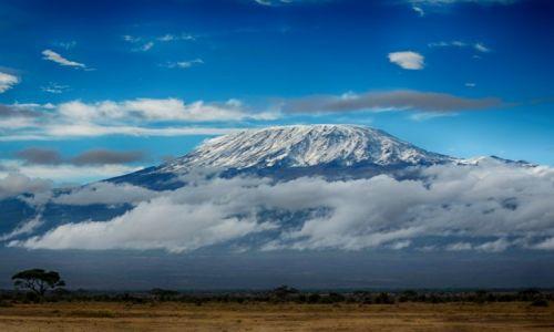 Zdjęcie KENIA / Kenia / Park Amboseli / Kilimandżaro