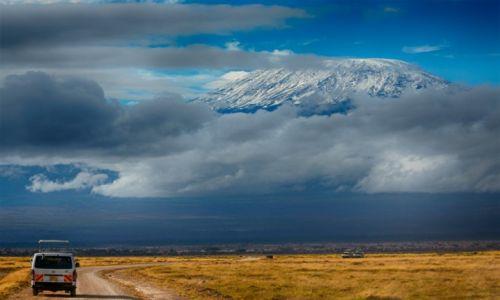 Zdjecie KENIA / Kenia / Park Amboseli / W otoczeniu Killimandżaro