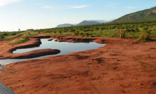 Zdjecie KENIA / Mombasa / Tsawo West / Czerwona Ziemia Masajów
