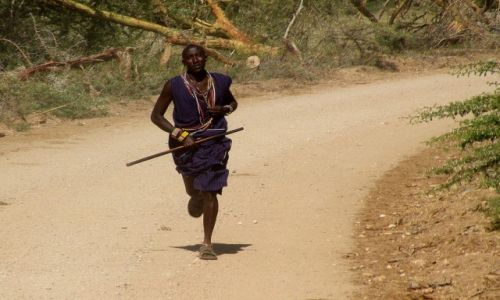 Zdjęcie KENIA / Amboseli / Park Narodowy Amboseli / W drodze...