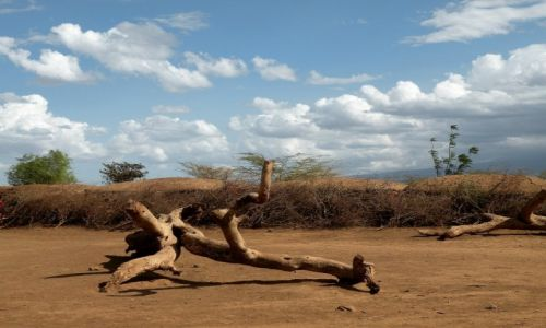 Zdjęcie KENIA / płd Kenia / Amboseli / Wioska dobrze ukryta