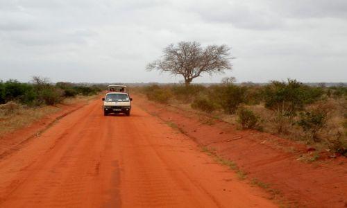 Zdjęcie KENIA / płd Kenia / Tsavo East / Czerwona ziemia Masajów
