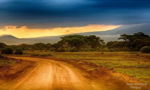 Zdjęcie KENIA / Park Amboseli / Park Amboseli / Wschód słońca w Amboseli
