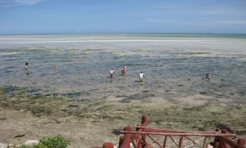 Zdjęcie KENIA / Mombasa coast / Ukunda / Wielki odpływ na Oceanie Indyjskim