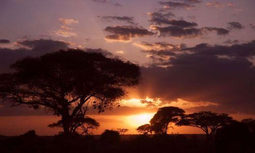 Zdjecie KENIA / brak / Amboselli / Afrykański zachód słońca
