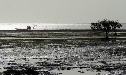 KENIA / Mombasa / Ocean Indyjski / Połów