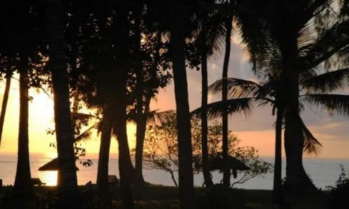 Zdjęcie KENIA / Mombasa  / Diani Beach Mombasa / Sunshine