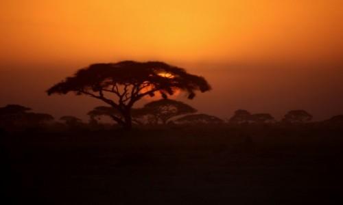 KENIA / Amboseli / Amboseli / Dobranoc Amboseli
