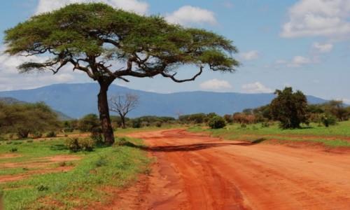 Zdjecie KENIA / Między Nairobi a wybrzeżem / Park Narodowy Tsavo / Droga