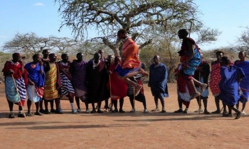 Zdjecie KENIA / Kenia Wschodnia / Wioska Masajów / Tradycyjny taniec Masajów